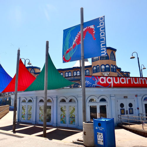 Heal the Bay Aquarium under the Santa Monica Pier