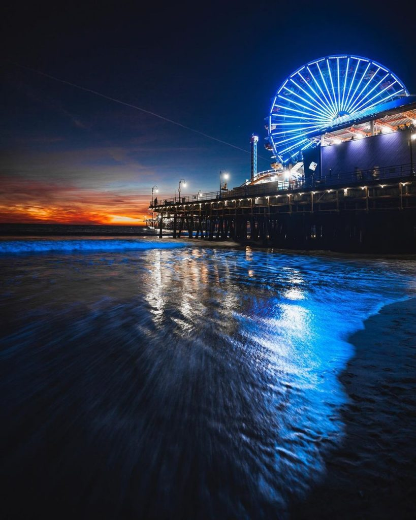 Santa Monica Pier Ferris wheel lit in blue